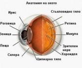 СБАЛОБ ЗОРА С МЕДИЦИНСКИ ЦЕНТРОВЕ СВЕТЛИНА И ЗОРА - Услуги - <h3>Лазерно лечение на очните заболявания </h3>